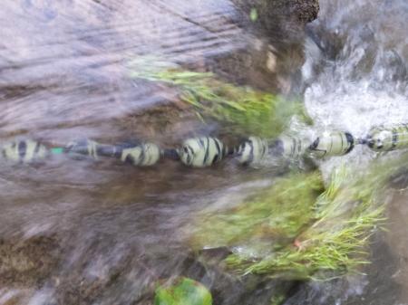 Подводный поплавок euro-som 20 Gramm