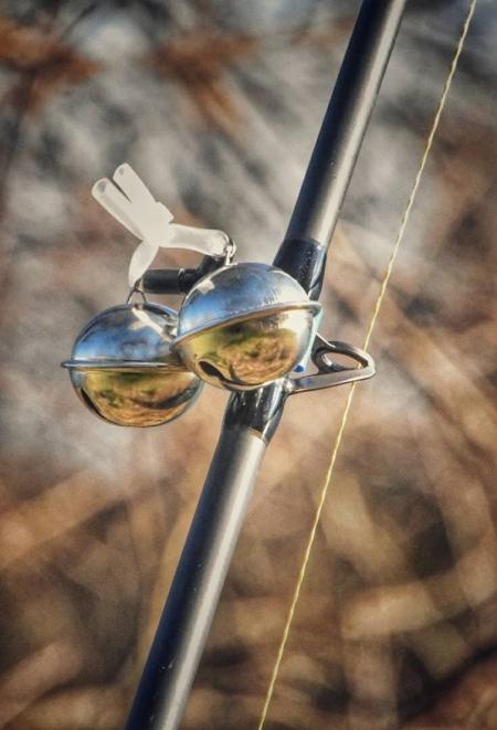 Catfish Alarm Bells
