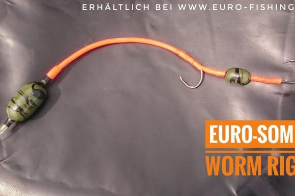 euro-som-wurm-uposenmontage1138B874-E82D-84C8-FA8D-56E9D1C07391.jpg